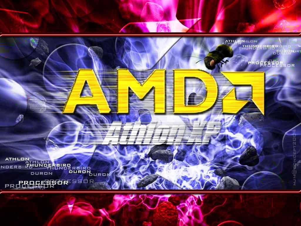 amd 5