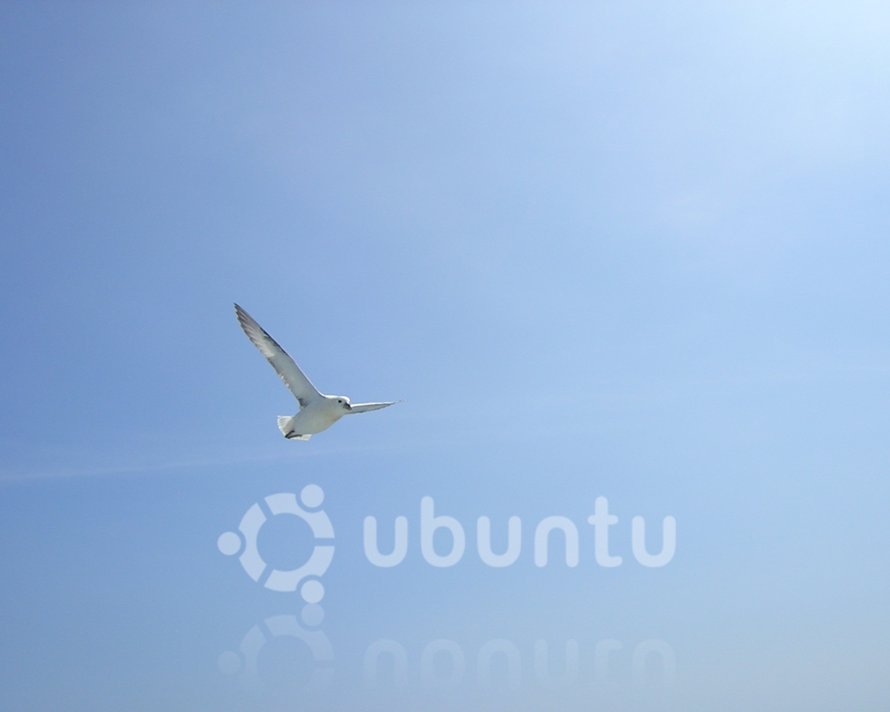 linux 21
