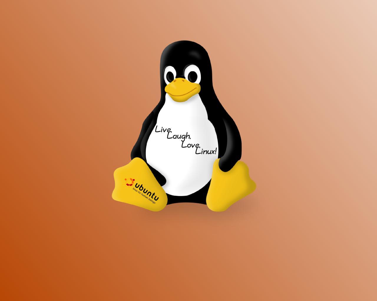 linux 31