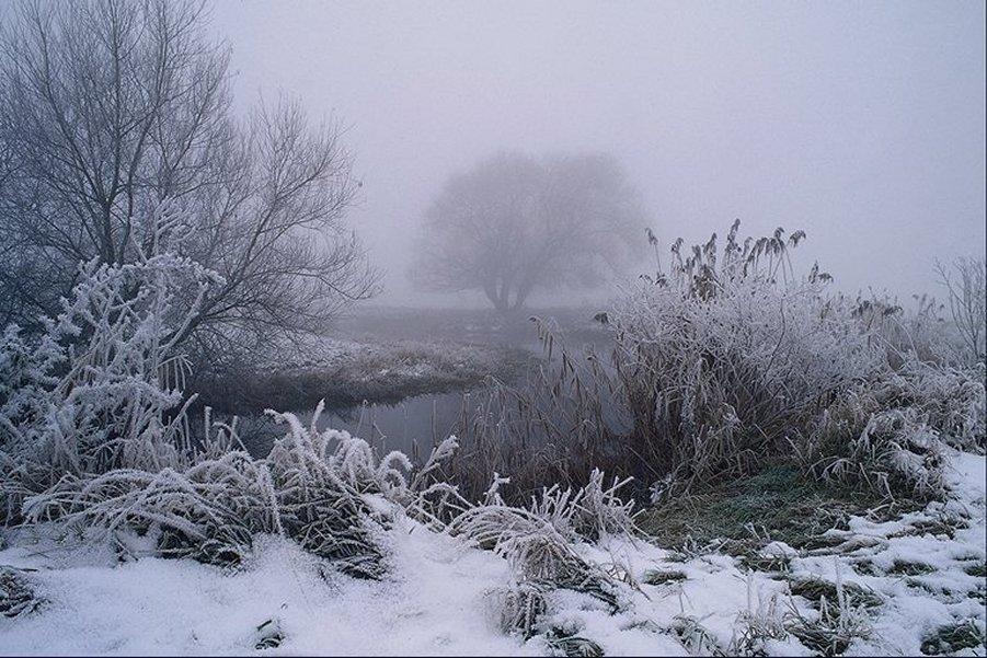 LAND neige
