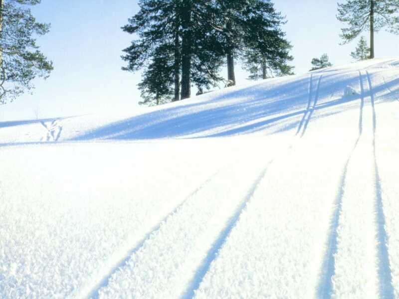 LAND snow