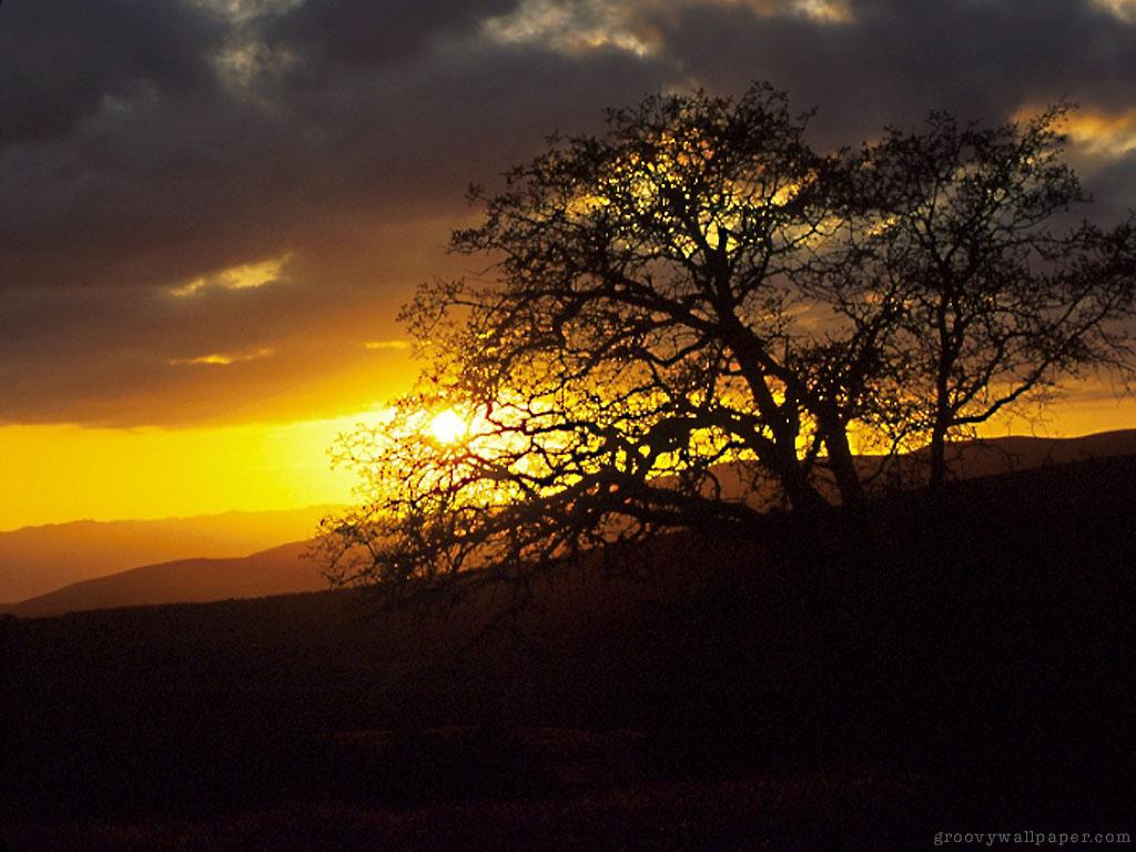 sunsetI1024X768
