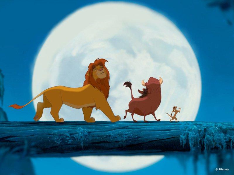 le roi lion 6